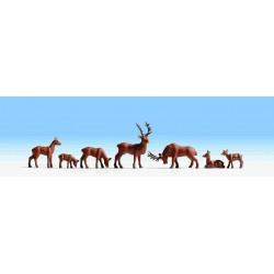 Noch 15730 Hirsche
