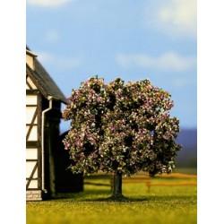 Noch 21570 Obstbaum blühend