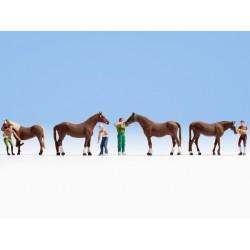 Noch 15632 Pferdepflege