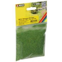 Noch 08214 Gras Zierrasen...