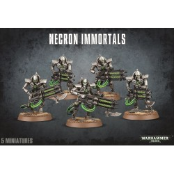 Games workshop 49-10 NECRON...