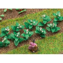 Faller 181275 14 Tabakpflanzen